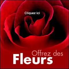 ov_fleurs.jpg