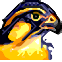 Sala55 avatar