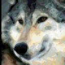 TonioNina avatar